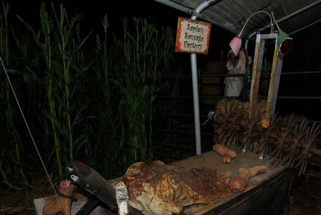 Terror In The Corn Arizona Haunted Houses