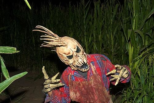 Terror In The Corn Arizona Haunted Houses